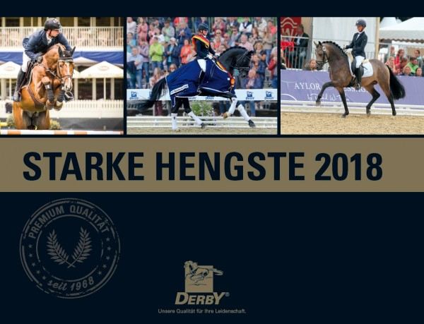 Derby Starke Hengste 2018